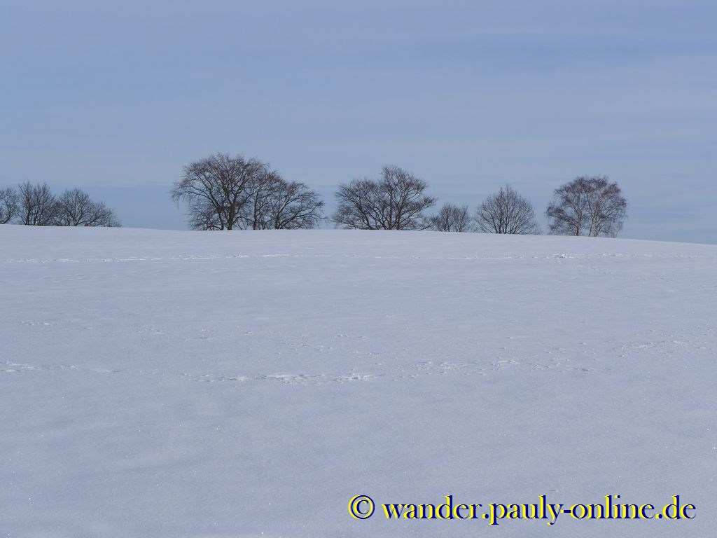 Wolfgarten Winterlandschaft