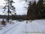 image 20130126_wolfgarten_024-jpg