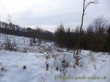 image 20130126_wolfgarten_028-jpg