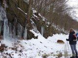 image 20130126_wolfgarten_038-jpg