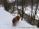 image 20130126_wolfgarten_043-jpg