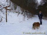 image 20130126_wolfgarten_045-jpg