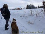 image 20130126_wolfgarten_048-jpg