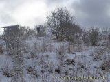 image 20130203_marmagen__032-jpg