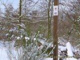 image 20130208_hweiher_39-jpg