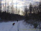 image 20130208_hweiher_51-jpg