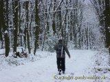image 20130209_wanderweg4_002a-jpg