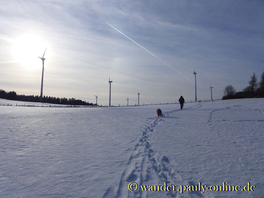 Windpark Ravelsberg bei Dottel