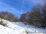 image 20130210_wanderweg1_016-jpg