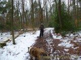 image 20130216_wanderweg6_012-jpg
