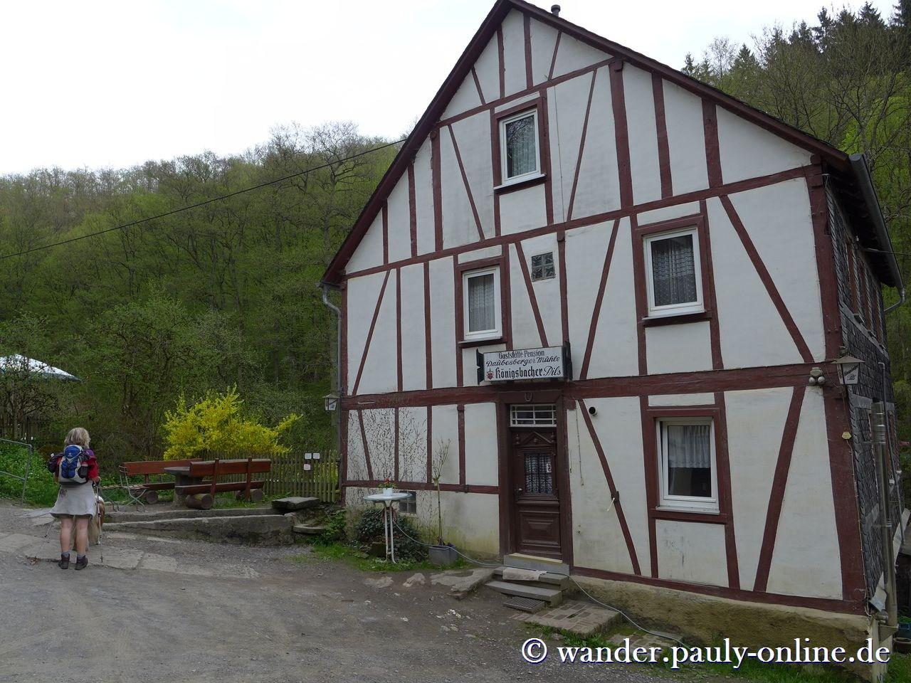 Traumschleife Ehrbachklamm - Daubisberger Mühle