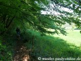image 20130518_spurensuche_048-jpg