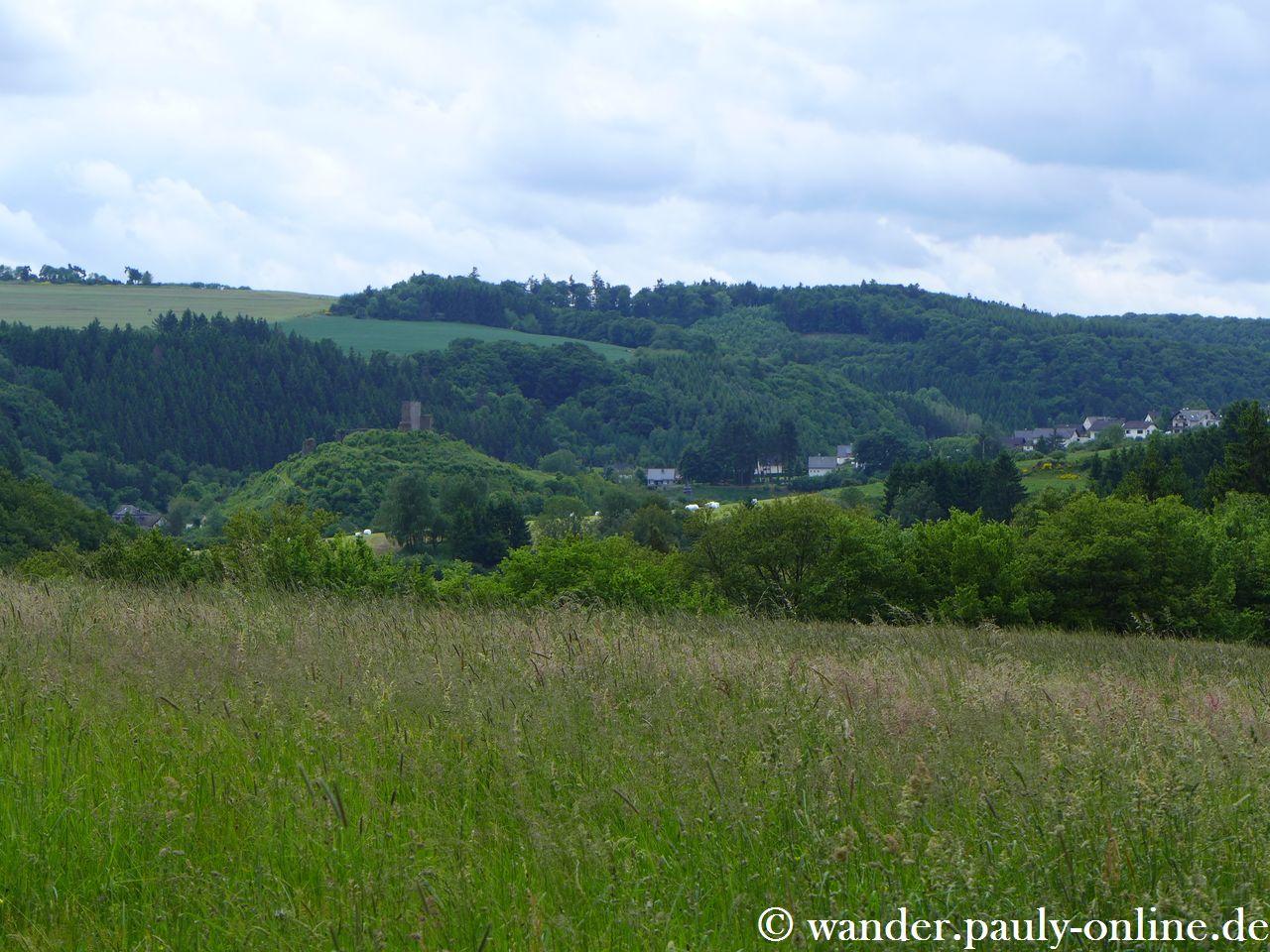 Traumpfad Wanderather - Blick zur Virneburg