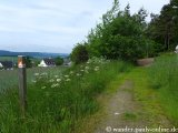 image 20130615_wanderather_014-jpg