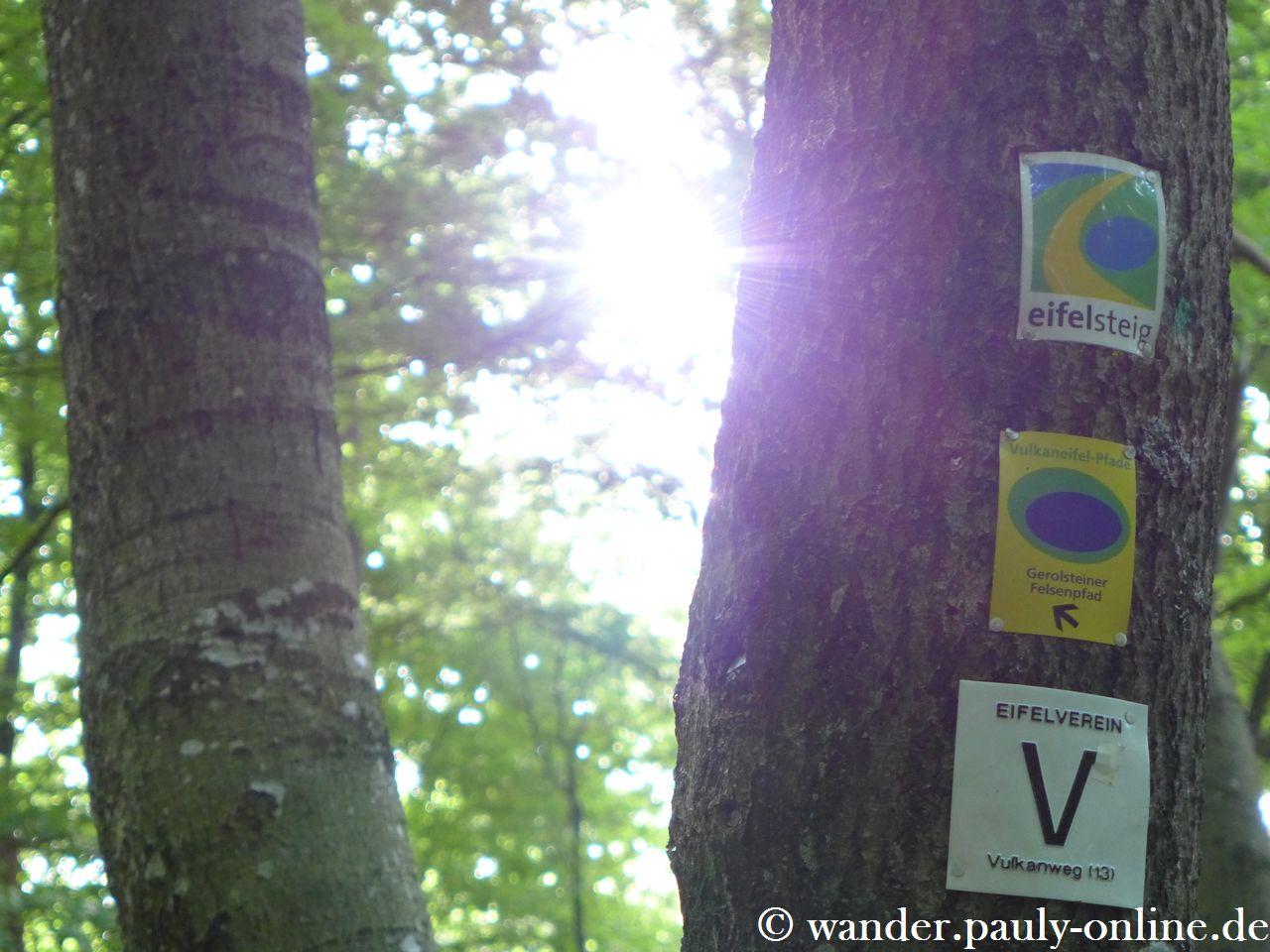 Gerolsteiner Dolomiten - Eifelsteig