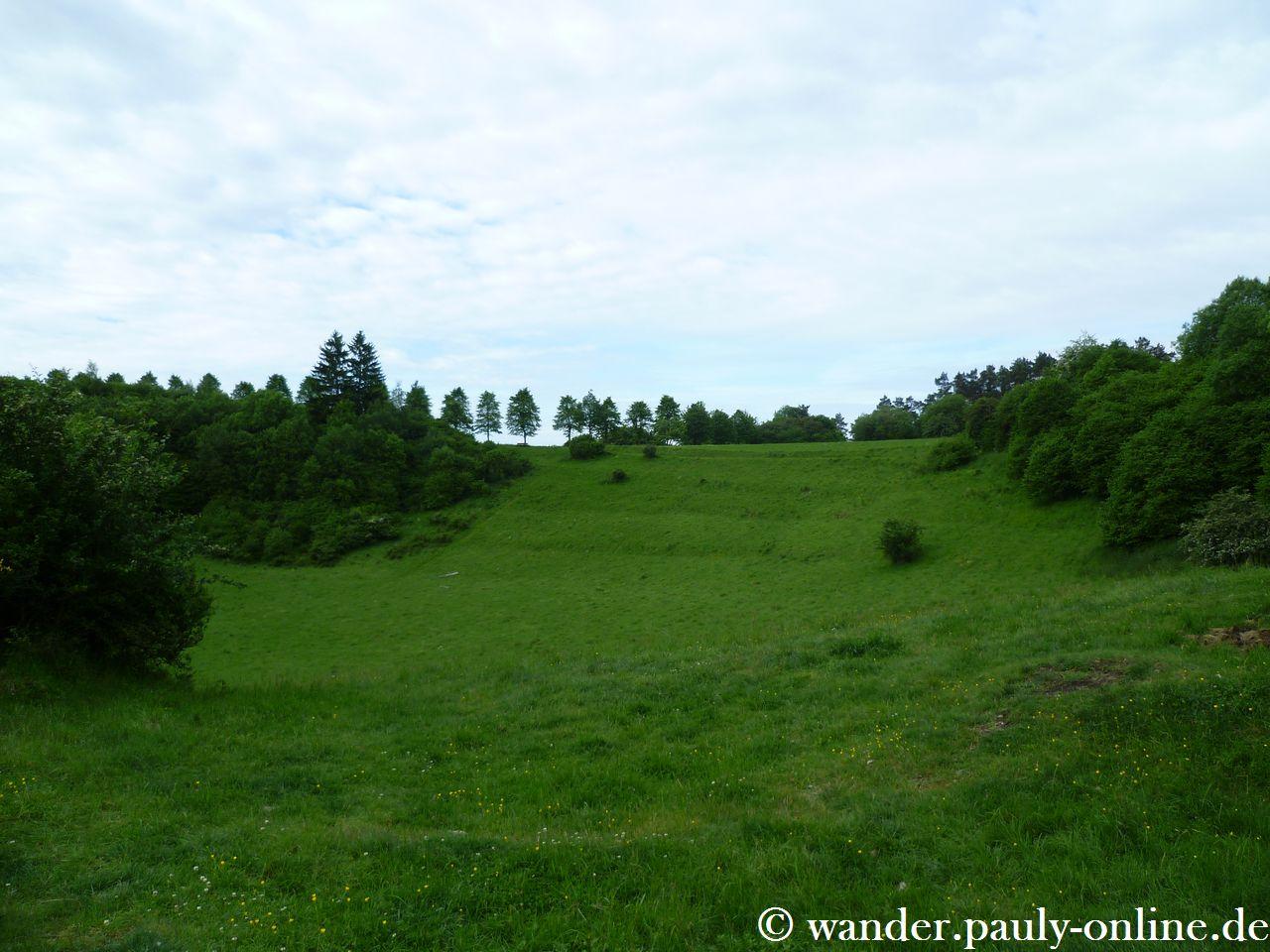 Gerolsteiner Dolomiten - Papenkaul