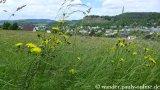 image 20130616_gerolstein_110-jpg