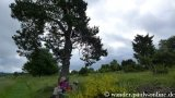 image 20130622_virneburg_080-jpg