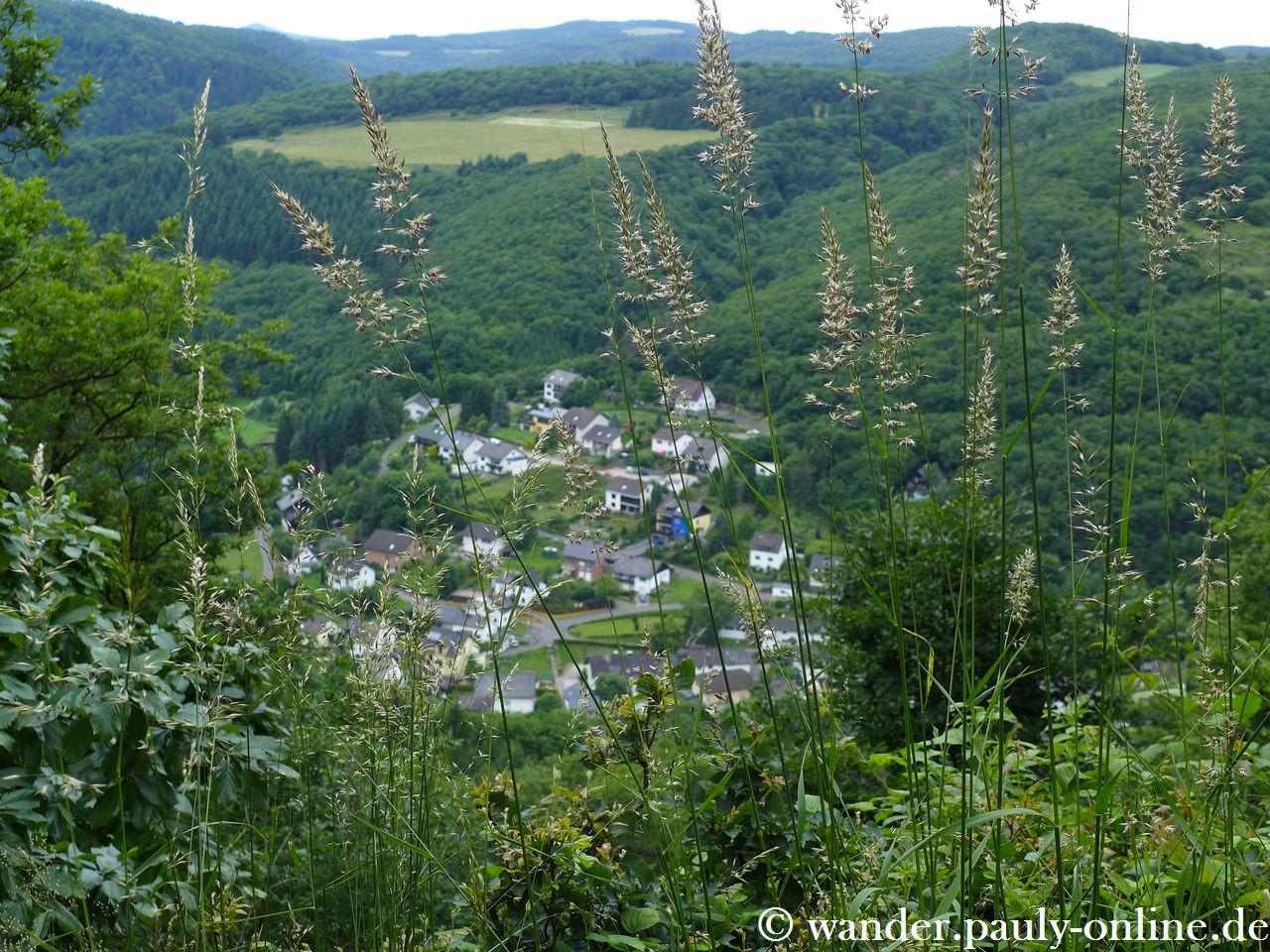 Traumpfad Förstersteig - Blick ins Nitzbachtal