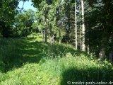 image 20130630_foerstersteig_106-jpg