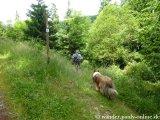 image 20130630_foerstersteig_197-jpg