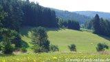 image 20130804_spessart_051-jpg