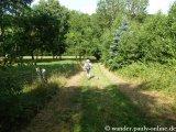 image 20130804_spessart_067-jpg