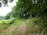 image 20130804_spessart_074-jpg