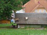 image 20130804_spessart_101-jpg