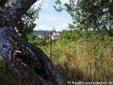 image 20130817_saarland_202-jpg