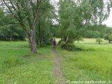 image 20130818_saarland_165-jpg